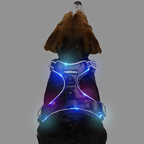 Rabbitgoo  Dog Harness No-Pull Pet Harness Adjustable Outdoor Pet Vest 3M Reflective Oxford Material Vest for Dogs Easy Control for Small Medium Large Dogs (Large, LED)