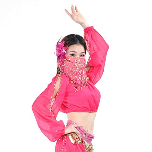 ESHOO Ladies Belly Dance Costume Lantern Blouse Long Sleeves Bra Tops No Face Scarf (Egyptian Girl Sexy)