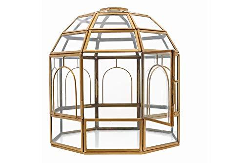 (Urban Born-Handmade Glass Terrarium, Birdcage-9