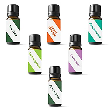 Zellous Pure Aromatherapy Top 6 Therapeutic Grade Basic Sampler Essential Oil Set, 10militers, Set of 6 (Lavender, Tea Tree, Eucalyptus, Lemongrass, Orange, Peppermint)
