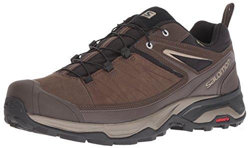 - Salomon Men's X Ultra 3 LTR GTX Hiking Shoe, delicioso/Bungee Cord/Vintage kaki, 11 D US