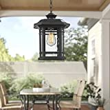 """Emliviar Modern Exterior Pendant Light Lantern, 14"""" Outdoor Hanging Light in Black Finish with Seeded Glass, A2202110D1"""