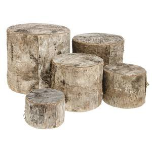 Birch Wood Risers, set of 5 by Retail Resource