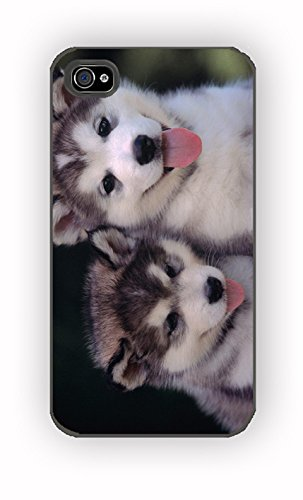 siberian husky puppies dog for iPhone 4/4S Case