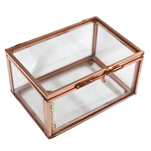 MonkeyJack Modern Clear Glass Cuboid Geometric Terrarium Jewelry Box Succulent Plants Box - Rose Gold, S