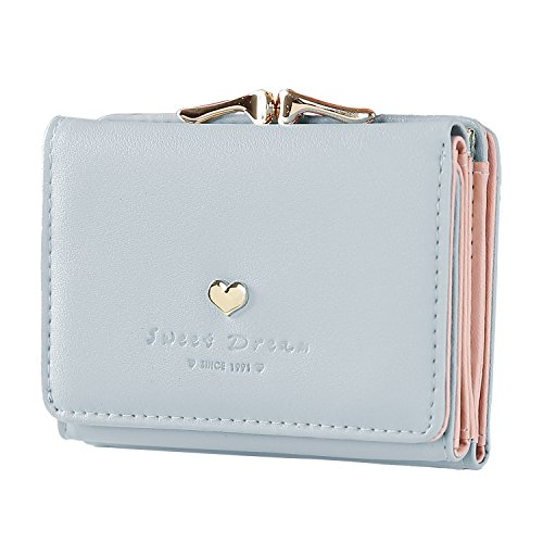 Heart Girl Wallet (Womens Wallet Metal Frame Little Clutch Wallets Card Holder Wallet Coin Purse for Women (Blue))