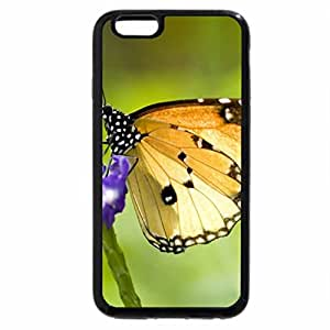 iPhone 6S Plus Case, iPhone 6 Plus Case, butterfly