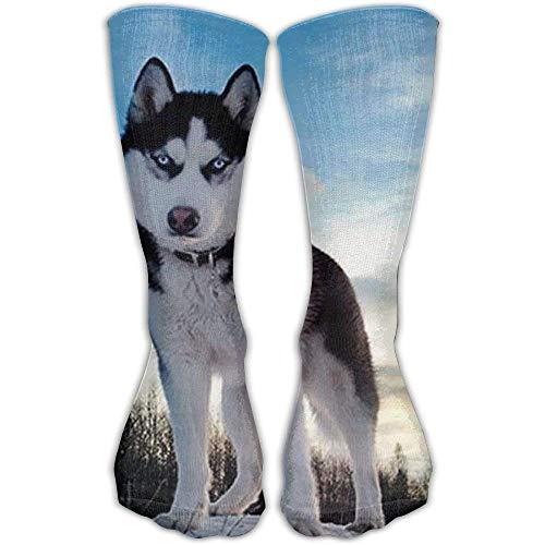 Huskies Huskie Head - Sock Husky Huskie Dogs Unisex Sport Over-The-Calf Long Tube Stockings One Size