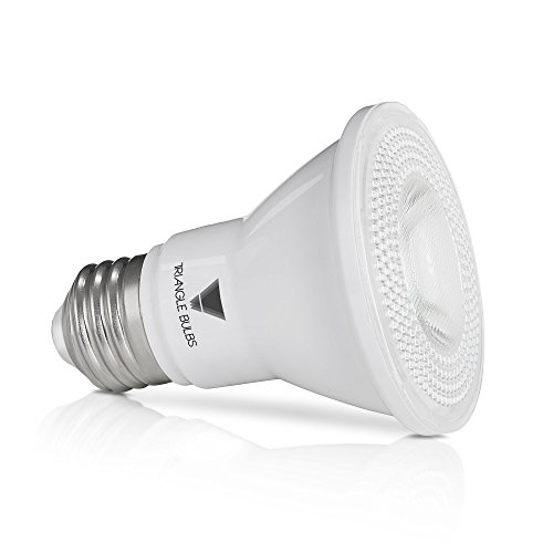 Led Light Bulb Par20 in Florida - 3