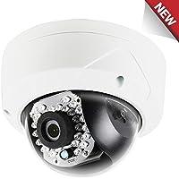 LTS Platinum 2.1MP 1080p Vandal IR Mini Dome IP Camera: 4mm, WDR, 100 ft Infrared, IP66, PoE/12v DC, ICR, VCA, 3-Axis, Onvif, Local Storage, 3yr
