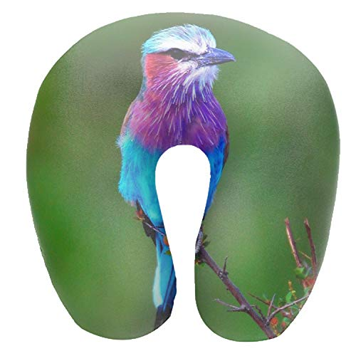 - Lilac Breasted Roller U Shaped Air Pillow Neck Head Cushion Support Rest Outdoors Car Office Home Travel Pillow