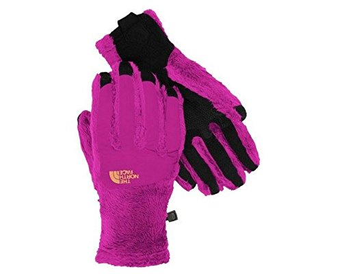 The North Face Denali Thermal Etip Glove Womens Dramatic Plum/Dramatic Plum S