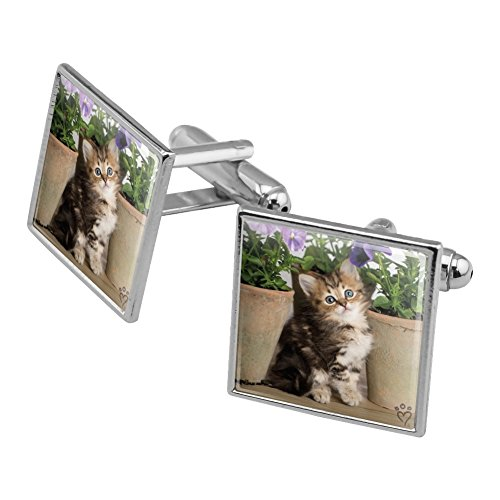 - Graphics and More Ragdoll Tiffany Kitten Cat Flower Pots Square Cufflink Set Silver Color