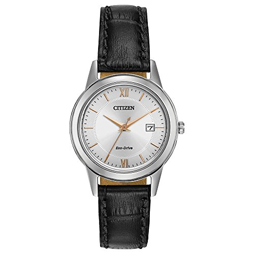 Citizen Women s Eco-Drive Stainless Steel Watch with Date, FE1086-04A