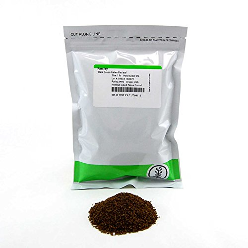 Dark Green Italian Flat-Leaf Parsley Seeds: 1 Lb - Non-GMO, Heirloom Herb Seeds for Herbal Garden & - Parsley Organic Seed