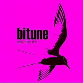 Bitune After The Fire