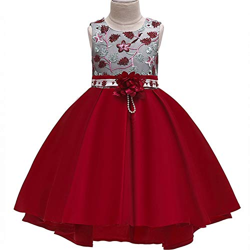 (Baby Girls Infant Embroidery Dress Kids Gold Wedding Toddler High-End Dress Flower Tutu Formal Party Dress Girls,Xd482-Winered,10)
