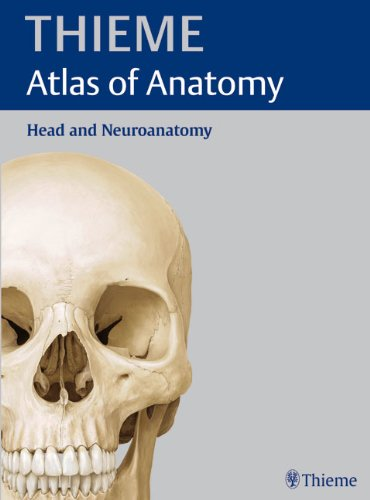 Head and Neuroanatomy (Thieme Atlas of Anatomy Series)