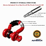 "AUTMATCH Shackles 3/4"" D Ring Shackle"