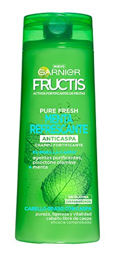 Garnier Fructis Champú Pure Fresh Menta Refrescante - 360 ml: Amazon.es: Amazon Pantry