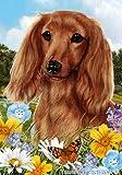 """Dachshund Red Longhair Dog – Tamara Burnett Summer Flowers Outdoor Garden Flag 12"""" x 17"""" For Sale"""