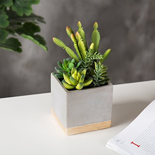 MyGift 9-Inch Artificial Succulent Plant Arrangement in Square Gray Clay Planter by MyGift (Image #2)