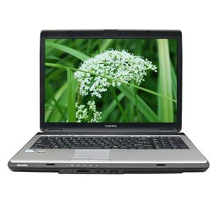 Amazon.com: Toshiba Satellite L355-S7905 Laptop Intel Celeron 585