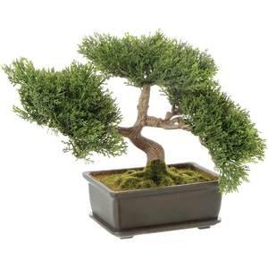 9'' Cedar Bonsai Tree, Artificial by Retail Resource
