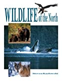 Wildlife of the North, Steven Kazlowski, 0888395906