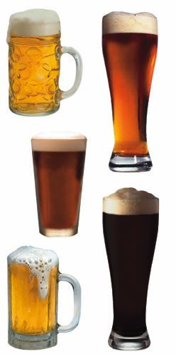 Paper House Productions ST-2162E Photo Real Stickypix Stickers 2-Inch by 4-Inch 6-Pack Beer