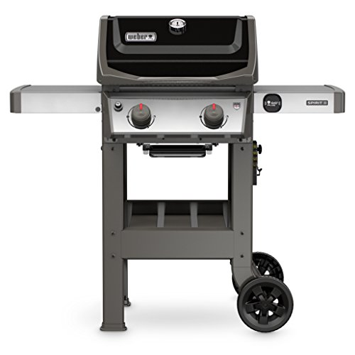 Mini Porcelain Box - Weber 44010001 Spirit II E-210 2-Burner Liquid Propane Grill, Black