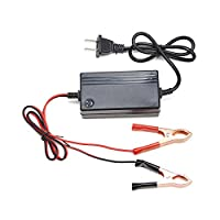 Orion Motor Tech Portable Multi-mode Battery Charger for Tender Motorcycle Car Boat ATV, 12V/1.2A