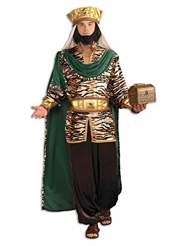 Forum Novelties Men's Biblical Emerald Wiseman Adult Costume, Multicolor, -