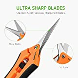 "VIVOSUN 6.5"" Gardening Hand Pruner Pruning Shear with Straight Stainless Steel Blades Orange"