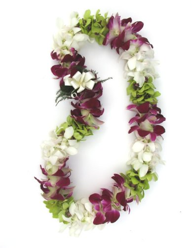 Leis Orchid Fresh Hawaiian - Fresh Hawaiian Lei - Colorful Mixed Double Orchid Lei