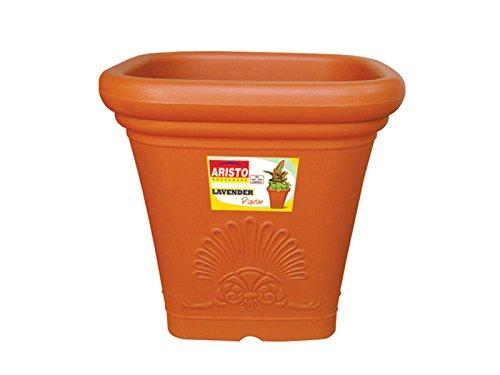 Best Designer plant pots indoor India 2021