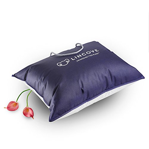 100% Goose Down Luxury Sleeping Pillow - Enhance Your Sleep with This Soft/Medium Down RÊVUER Bed Pillow by Lincove - 800 Fill Power 600 Thread Count - MADE IN USA (Standard)