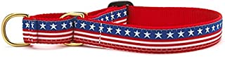 product image for Up Country Stars & Stripes Martingale Dog Collar