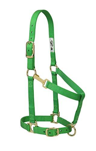 Weaver Leather Basic Adjustable Nylon Halter, Green, 1