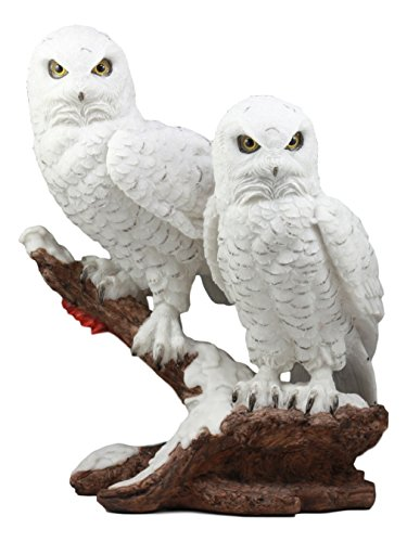 (Ebros Mystical Two White Snowy Owl Couple Perching On Tree Branch Statue 12.25