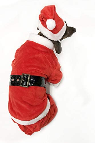 Amazon.com: Perro Disfraz de Papá Noel por midlee, XXL: Mascotas
