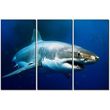 natural art big shark prints fish prints art contemporary print on canvas