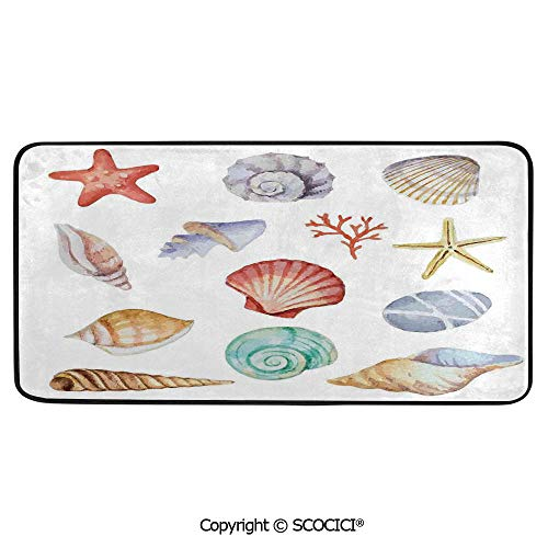 Rectangular Area Rug Super Soft Living Room Bedroom Carpet Rectangle Mat, Black Edging, Washable,Nice,Collection of Different Type Seashells Scallop Mollusk - Scallop Rectangle