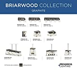 Briarwood Collection Whitewashed One-Light