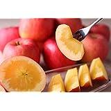 蜜入り りんご こうとく 2.5k(8~9玉) 生産直販