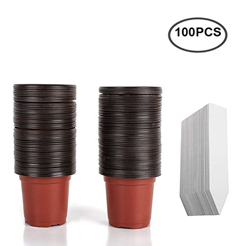 M-Aimee 100 Pcs 4'' Plastic Plants Nursery Pot/Pots Seedlings Flower Plant Container Seed Starting Pots with 100PCS Waterproof Plastic Nursery Garden Labels Plant Tags by M-Aimee