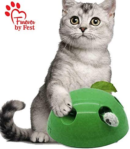 Furever 3 Replacement Cat Toy Attachments to use with The Pop and Play; Includes One Mouse, One Fish and One Feather. Ideal for Your cat, Interactive Way. Best Cat Toys Ever 8