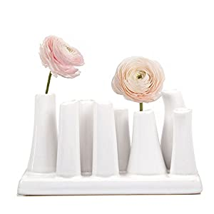 Chive - Pooley 2, Unique Rectangle Ceramic Flower Vase, Small Bud Vase, Decorative Floral Vase for Home Decor, Table Top Centerpieces, Arranging Bouquets, Set of 8 Tubes Connected (White) 1