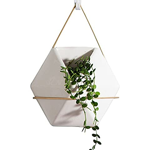 AsureQ 8 inch Hanging Ceramic Flower Pot Plant Holder Hanger for Indoor and Outdoor Decorative (Hexagon Wall Planter)