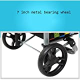 2-Wheel Collapsible Foldable Shopping